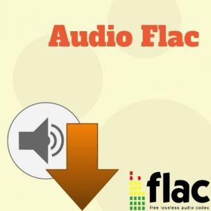 Audio Flac Icon